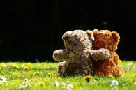 teddy-1361396_1920
